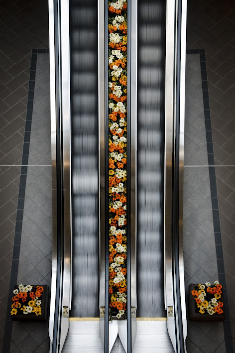 Floral Escalation by Jesse Nichols